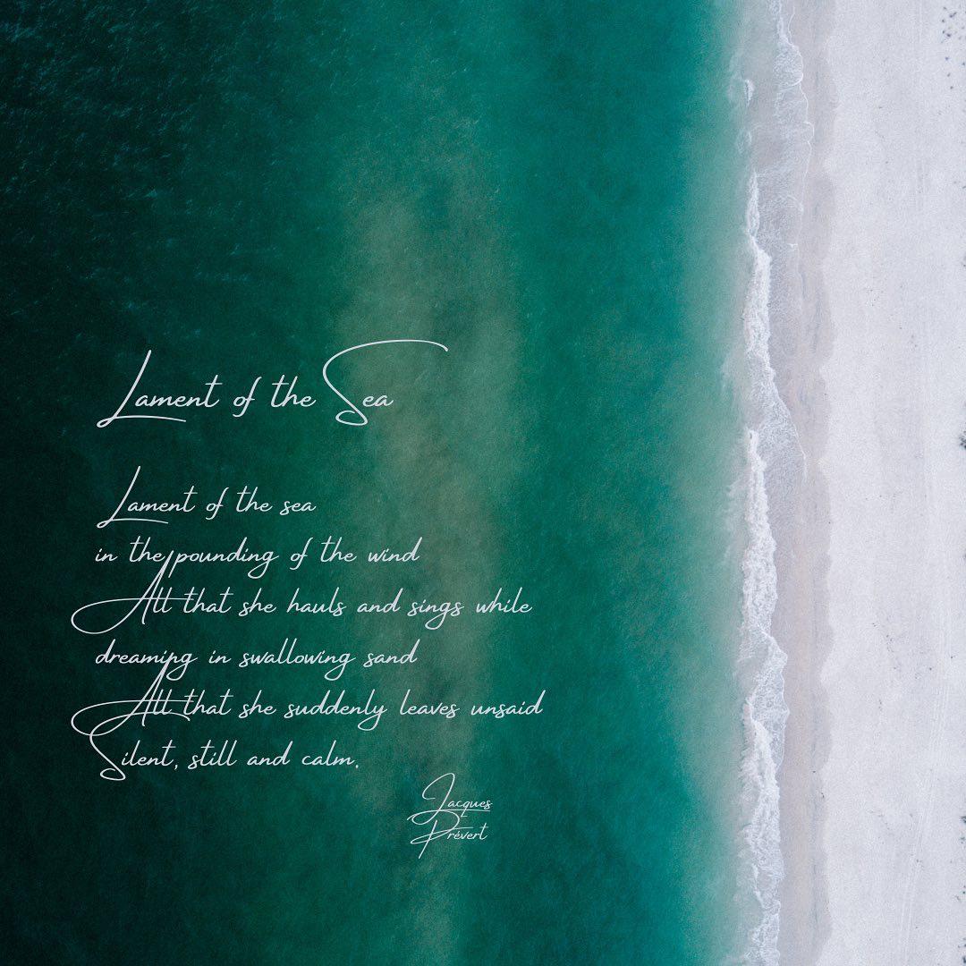 Poems at Sea